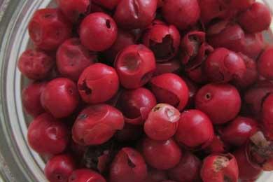 Cyprus Botanicals Pink Peppercorn   Soli Gin